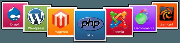 CMS-web-development-programmer