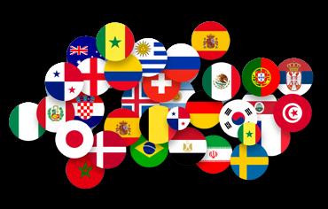 WPML Multi Language Website Support by WPML Expert